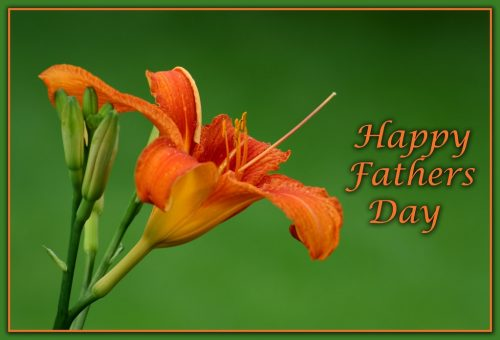 Images for Fathers Day 2021
